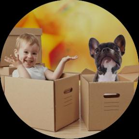 Taller para familias con bebés y perros