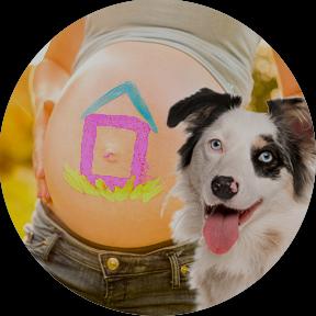 Taller para familias embarazadas y perros